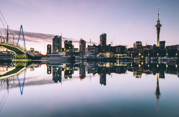 best small business ideas in New Zealand