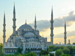 best small business ideas in Turkey